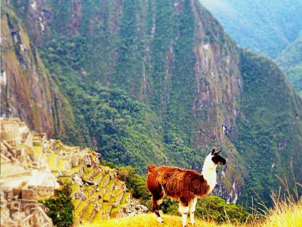 Agnieszka Kowalska - Bliss in Me - Yoga & Trek Peru 01